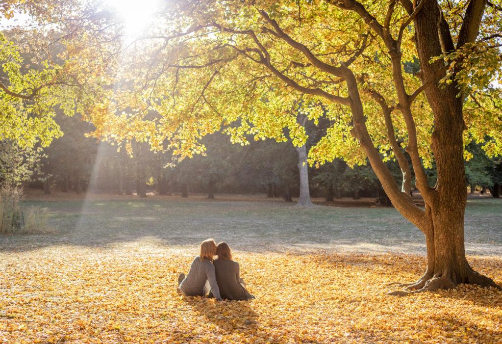 Pärchen unter Baum im Herbstlaub