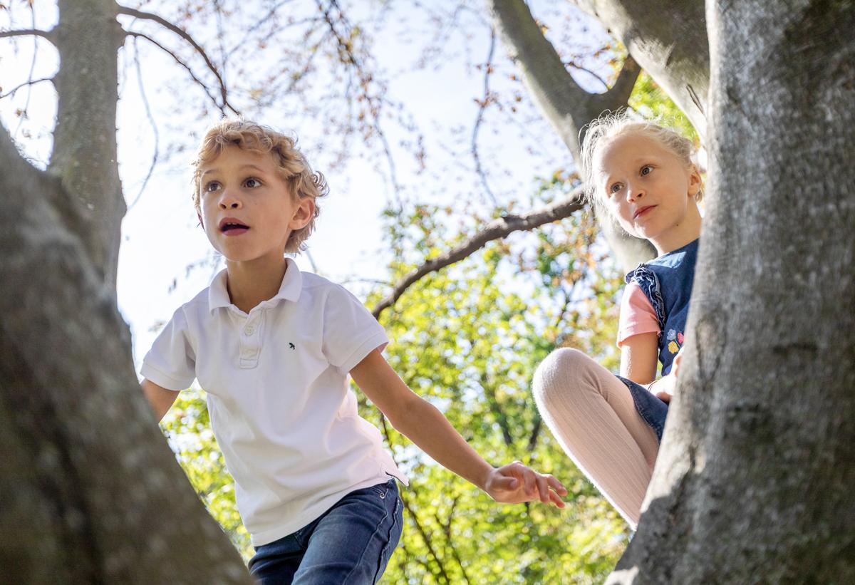 Kinderfotos im Baum